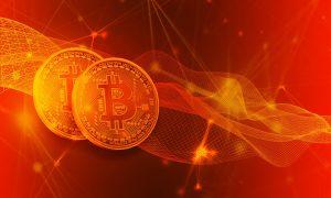 Absturz des Wertes der Vermögenswerte bei Bitcoin Evolution